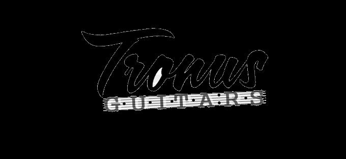 TRONUS GUITARS - LABORATORIO DI LIUTERIA PER CHITARRE E BASSI